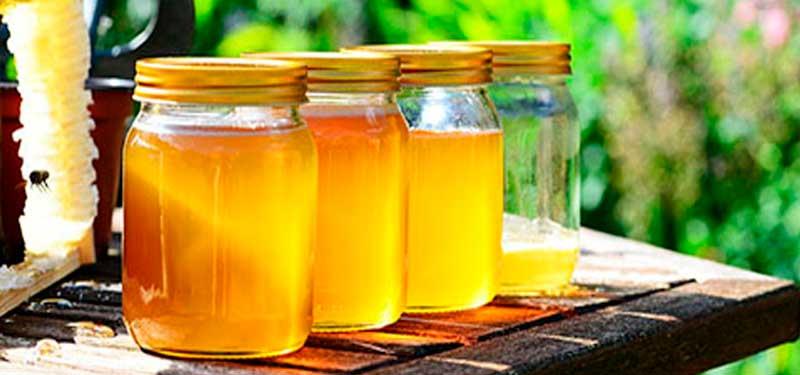 Endulzantes Naturales: alternativa al azúcar refinado y adictivo