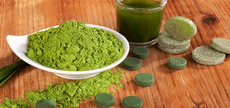 Chlorella aportes nutricionales